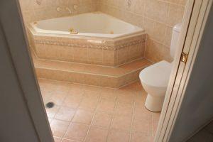 Waterproof Membrane for wet area repairs